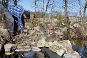 Preparing Pond for Winter